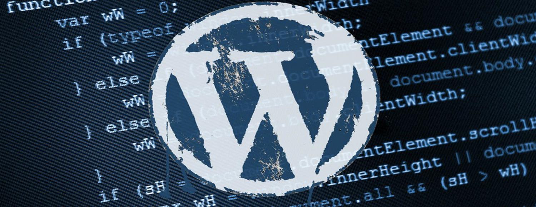 professional-wordpress-customization-and-its-importance