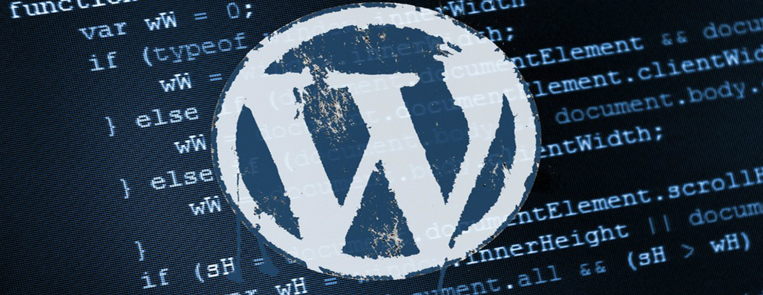 professional-wordpress-customization-and-its-importance